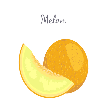 Melon exotic juicy stone fruit whole and cut vector isolated. Tropical sweet edible, fleshy food, dieting vegetarian icon, yellow sweet dessert plant Çizim