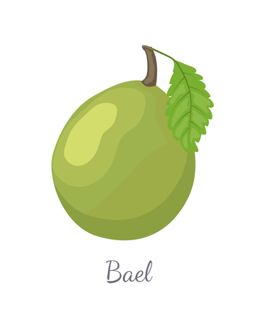 Bael exotic juicy fruit vector isolated icon. Aegle marmelos, Bengal quince, golden stone wood apple, Japanese bitter orange. Tropical edible food