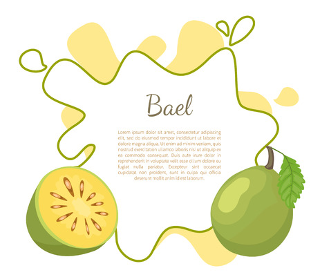 Bael exotic juicy fruit vector poster frame and text. Aegle marmelos, Bengal quince, golden stone wood apple, Japanese bitter orange. Tropical edible food