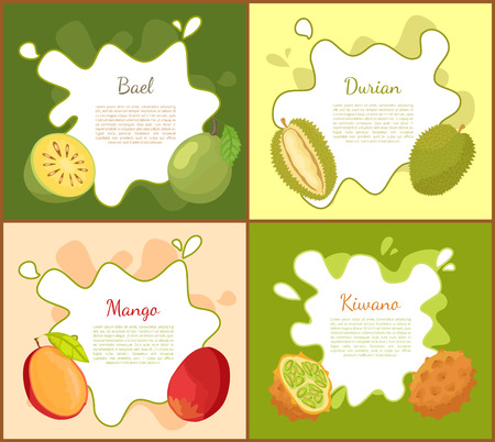 Bael and Durian Posters Set Vector Illustration