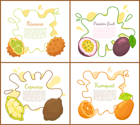 Kiwano and passion fruit, kiwano and cupuacu tropical meal. Kumquat fresh succulent food. Exotic ingredients, posters set with text sample vector Illustration
