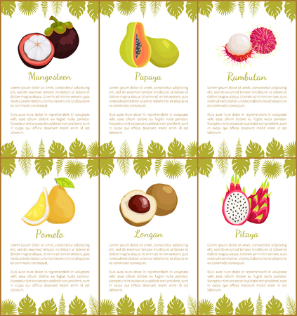 Mangosteen and papaya, rambutan and pomelo, longan and pitaya tropical posters set with exotic fruits and leaves vector illustration with text sample Ilustrace