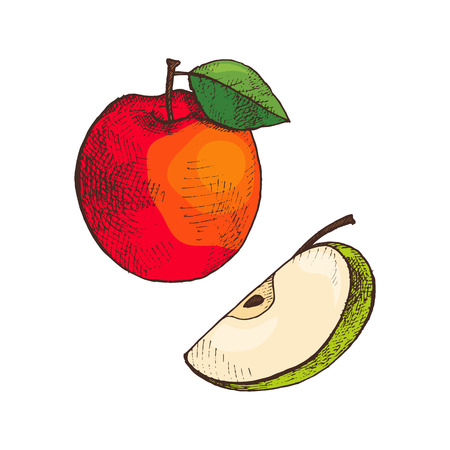 Ripe apple and slice of vitamin fruit, icons set vector. Ingredient with leaf on top, healthy dieting and food rich in good nutrients. Organic meal