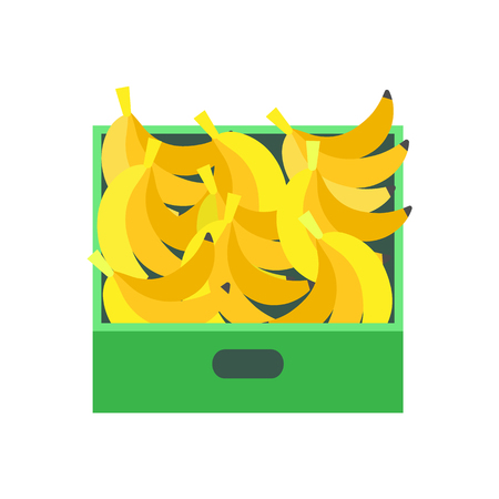 Banana tropical fruit in plastic container of seller vector. Closeup of bunch of tropical product in market. Snack dessert, tasty nutritious meal Illustration
