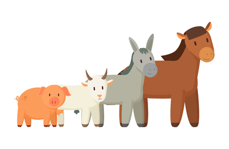 Set of domestic pets isolated on white backdrop, vector illustration of pig goat donkey and horse, artiodactyls animals collection colorful poster
