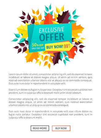 Exclusive offer buy now poster only one day. Merchandise of shop with special reduction autumnal promotion quality products and autumn leaves vector Illustration