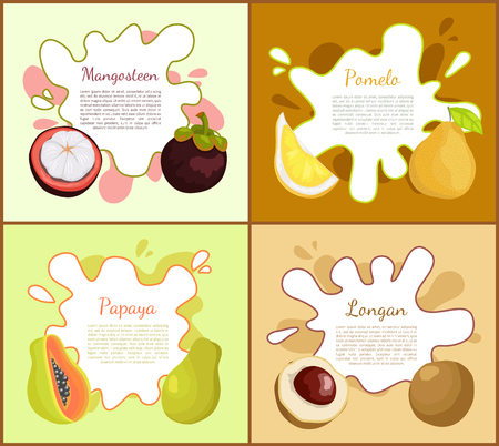 Mangosteen and pomelo exotic fruit slices and ripe succulent products. Papaya and longan posters set with information text sample, healthy food vector