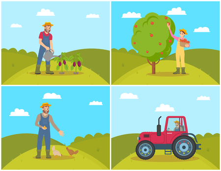 Farmer watering aubergines set vector. Harvesting and gathering of apple fruits from tree. Tractor machine working on land, male feeding chickens