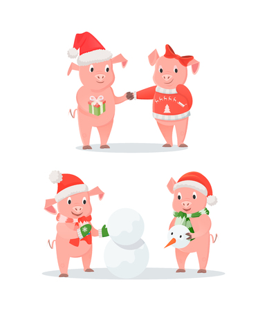 New Year piglets couples, gift box and snowman. Male and female pigs exchanging presents, outdoor activity in snow, Santa hat vector illustrations