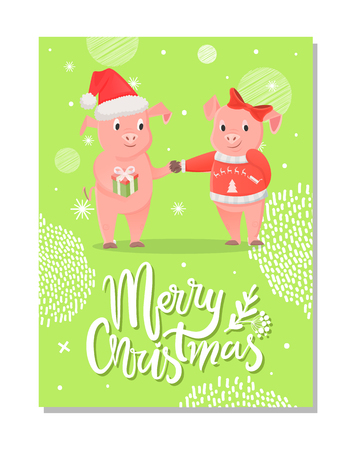 Merry Christmas postcard, piglets symbol of New Year with gift box on green snowflakes. Pig girlfriend and boyfriend in Santa hat and bow exchange presents vector