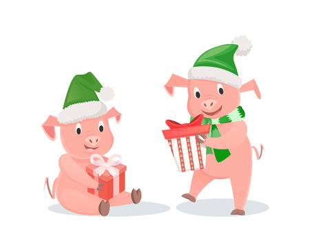 New Year pigs with gift boxes in hat and scarf. Pigs with presents, livestock mammal, winter holidays, zodiac symbol vector illustrations isolated