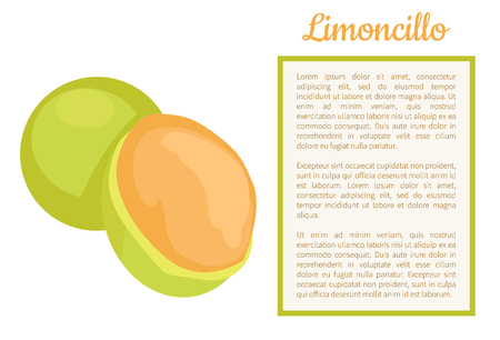 Limoncillo fruit whole and cut poster frame for text vector. Melicoccus bijugatus, Spanish lime, genip guinep, genipe and ginepa, quenepa, quenepe, chenet