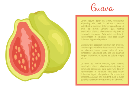 Guava or pineapple guavas exotic juicy fruit whole and cut vector poster frame for text. Tropical edible food, dieting plant with eatable red flesh 일러스트