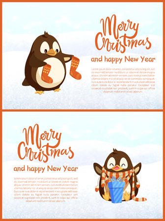 Merry Christmas and Happy New Year vector penguin holding socks and sitting bird with hands up in scarf with gift box in stripes, greeting cards template