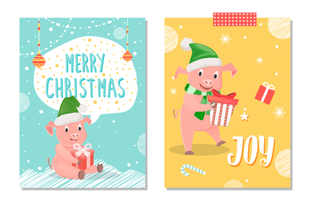 Merry Christmas and joy postcards, piglets New Year symbol, gift box isolated on snowflakes. Illustration