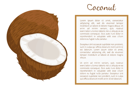 Coconut whole and cut exotic fruit vector poster frame for text. Vectores