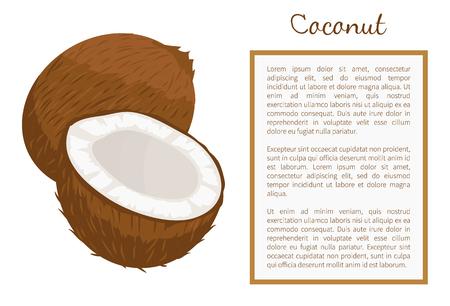 Kokos ganzer und geschnittener exotischer Fruchtvektorplakatrahmen für Text.