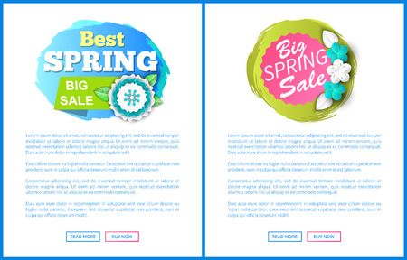 Springtime sale certificate with best prices offer. Vector web page with text sample, buttons read more and buy now. Cost reduction informative leaflets Illustration