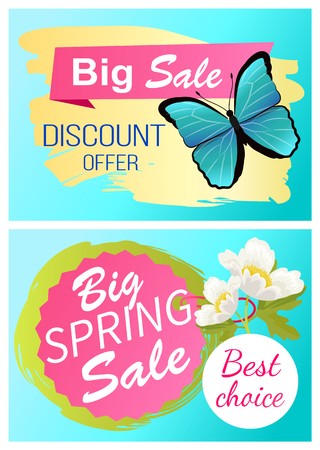 Big spring sale 70 off discount promo price offer set of stickers with blue butterfly and white apple tree blossom vector advertisements springtime Standard-Bild - 125493802