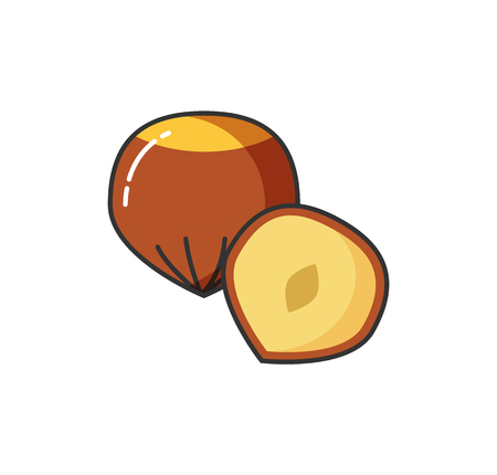 Food icon vector nuts whole and half. Hazel symbol collection nutmeg sign. Vector