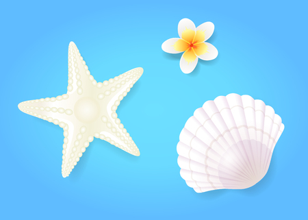 Snow-white shellfish and starfish with pale exotic flower, isolated on blue hand drawn composition. Summer beach theme banner, vector placard sample. Çizim