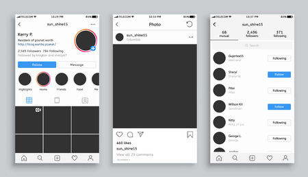 Screen of webpage, mobile interface vector. Photo mockup for social network following and followers, separate photo, likes and profile page as whole