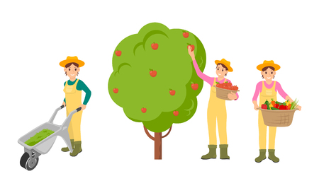 Woman farming people isolated icons vector. Farmer pushing trolley with compost for soil to be fertile. Basket with harvested vegetables and fruits Illustration