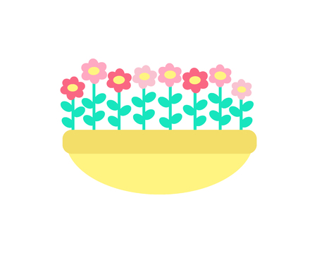 Daisies grow in clay pot vector isolated. Spring pink and red color flowers with green stems and leaves, growing in ground or sand, springtime elements
