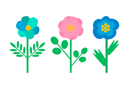 Buds with blue and pink petals, green stems and leaves, woods greenery, biological species. Plants, wild flowers isolated vector icons, nature elements