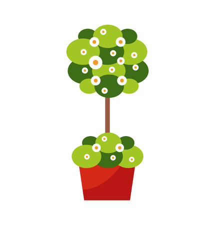 Exterior design decoration outdoor plant in pot vector. Flower or blooming bush, greenery and vegetation, floral decor, botanical element isolated object Illustration
