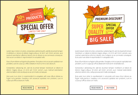 Limited sale super special offer up to 50 percent discount promo posters text sample. Autumn half price advertising emblem, foliage and leaves vector Ilustrace