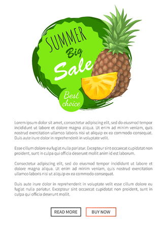Summer big sale summertime banner vector. Pineapple fruit and slices of tasty tropical plant. Vector promo web pages with text sample, best choice  イラスト・ベクター素材