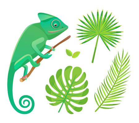 Camaleonte seduto e guardando il ramo. Fauna selvatica e anfibi con coda, rettili e foglie verdi di felce isolate su bianco, flora e fauna vettore