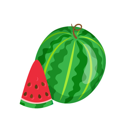 Summertime harvesting, watermelon whole and piece vector, isolated. Fresh berry with seeds, juicy ingredient, tropical meal or food refreshment in summer Illustration