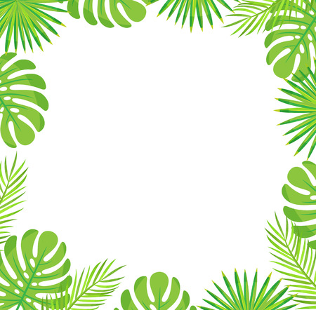 Tropical leaves border isolated green leaves of palm and monstera. Vector botanical frame of exotic plants, spare place for text, stylish botanical foliage Ilustrace
