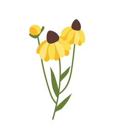 Yellow flower isolated icon vector, 8 march flora decoration. Holiday celebration, spring botanical element, thing to ornate. Bouquet blossom with petals