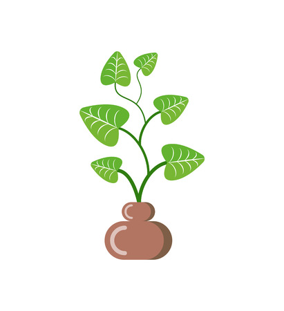Leaves of plant in pot vector, isolated icon of houseplant with foliage. Growing botanical frondage with stable, potted decorative element, herbal nature
