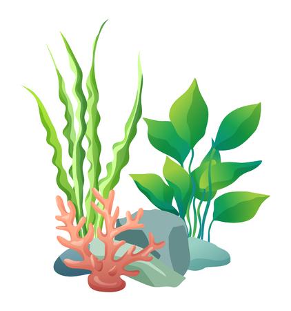 Vegetazione verde del mare profondo. Decorazioni da mettere negli acquari. Pietre con fori e piante diverse set di alghe isolate su illustrazione vettoriale