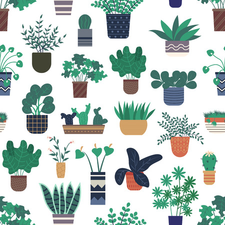 Houseplants growing in pots vector, seamless pattern of flora and foliage decorating homes. Calla flowering in vase, floral bouquet and cactus in flowerpot