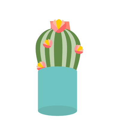Cactus plant with flowering vector, isolated icon of houseplant in pot, growing flora. Thorns of cacti with flowers and orange blossom, natural plant Illustration