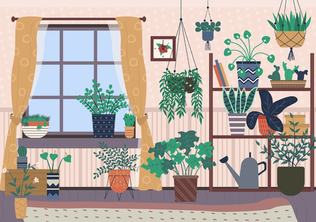 Plants in pots vector, houseplants with soil growing in containers, watering can standing on drawer, carpet and curtains, decor of house room with flora