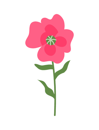 Flower of pink color vector, isolated icon, botanical decoration for special day. Present for girl or woman, decoration, floral with leaves and blooming Ilustrace