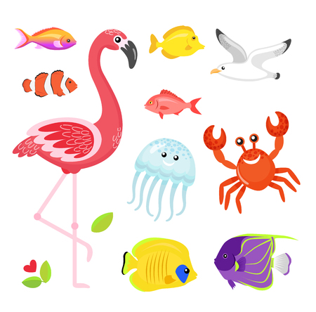 Fish different types set vector, flamingo pink bird with jellyfish. Crab and seagull, flower and flora foliage of exotic area. Jellyfish and crayfish