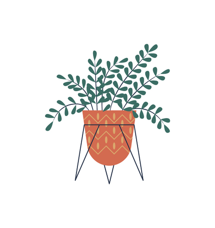 Plant for room decoration vector, houseplant placed in pot, flat style flora. Flower for house, foliage in container for herbs growth, isolated decor
