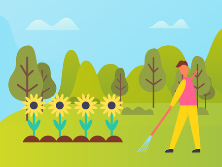 Person working on field of sunflowers vector, man using rakes to cultivate soil for fertility. Confield with blooming flowers, sunny weather in forest Ilustração