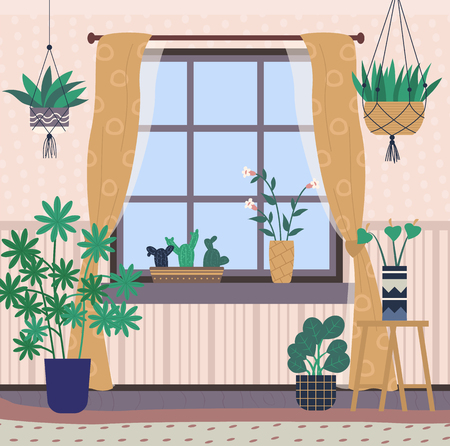 Greenhouse with plants on shelves vector, room interior filled with flora in pots. Window with curtains, bright space for flowers, orangery conservatory Illustration