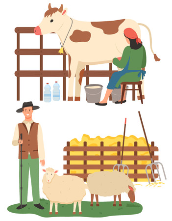 Farmers caring for animals vector, sheep and cow farm flat style. People with cattle, production of milk and organic food and ingredients, countryside