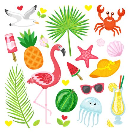 Summer symbols, tropical animals and plants, food and accessories vector. Gull and flamingo, pineapple and watermelon, crab and jellyfish, palm leaves Illustration