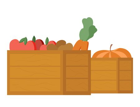 Food in wooden containers vector, agriculture and gathering culture, pumpkin and carrots, apple tomatoes isolated meal in boxes, harvesting season 向量圖像