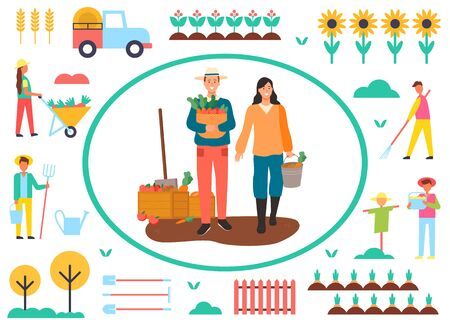 People working on field vector, farmers on plantation with carrots, man and woman flat style. Sunflowers and orchard, scarecrow and transport van